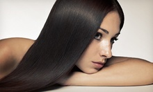 $10 for an Eyebrow Waxing at Hernan Salon Boston