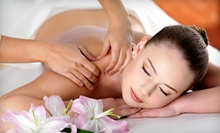 $59 for Microdermabrasion Plus Facial at Day Spa Nirvana LLC