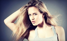 $100 for a Full Highlight, Cut & Blow Dry  at Salon Monte Carlo