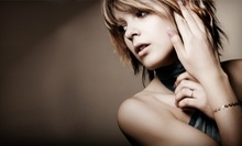 $69 for All-Over Color or Mini Foils and Haircut with Styling at Illustrated Salon Spa