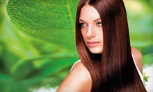 $25 for $50 at Vered Salon