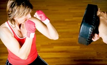 $10 for a 7:30 p.m. Beginner Krav Maga Class at Krav Maga Novi