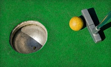 $3 for Miniature Golf  at Chesterfield Sports Fusion