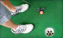 $5 for Mini Golf for Two at Wild Fun Center