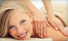 $45 for a Ultrasonic Microdermabrasion Treatment  at Bella Reina Spa