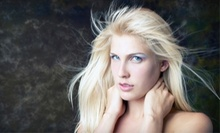 $28 for Haircut with Christy Harris at Shear Perfection