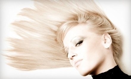 $100 for Women&#x27;s Cut and Color  at Le Salon Du Kat