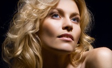 $100 for a Half Head Highlights, Shampoo, Cut, and Style at Fabi's Hair Studio