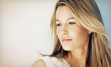 $45 for a Haircut, Partial Highlight &amp; Root Touch Up ($130 Value) at Duny's Unisex