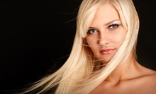 $150 for a Brazilian Blowout Zero at Hair by Andrea Gibson
