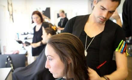 $80 for A Woman&#x27;s Conditioning Treatment and Haircut at Y Gallery Salon