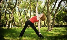 $3 for a 9 a.m. Vinyasa Flow Yoga Class at Your Yoga Austin