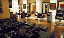 $35 for a Haircut, Style, Reconstructive Treatment &amp; Neck Massage at Neely O'Hair