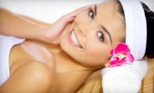 $78 for All-Over, Single Process Color with Haircut and Style  at Venus Allure Salon and Spa