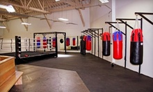 $14 for a One-Hour Boxing Class at 12:00 p.m. at The Park Gym
