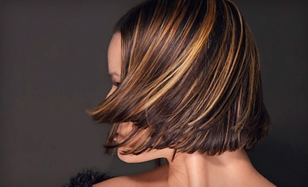 $55 for a Partial Highlight &amp; Blowout  at Silk Hair Spa