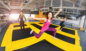 Up to 36% Off Jump Passes at Sky Zone at Sky Zone, plus 6.0% Cash Back from Ebates.