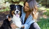 Up to 85% Off Dog Spa Package at Furry Friends