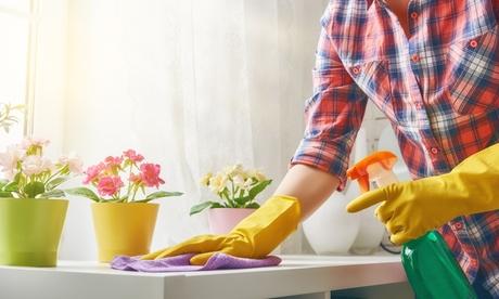 4, 12, 16 o 20 horas de limpieza a domicilio con Servicios y Limpiezas Rasba (hasta 66% de descuento)