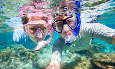 4Hour Snorkelling Trip + Lunch for One $55, Two $105 or Four People $205 with All Sea Charters Up to $600 Value
