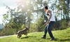 Up to 50% Off Group Dog Training Class