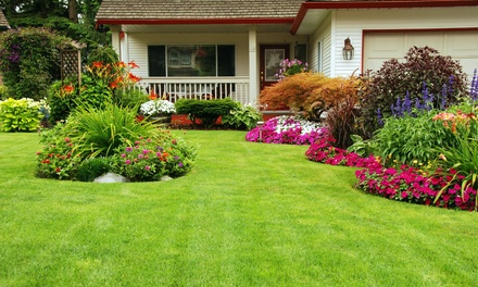 Chicago Landscaping Deals In And Near Chicago Il Groupon