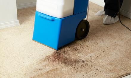 Carpet Cleaning - Deals in Sarasota, FL