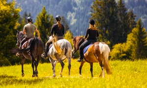 Up to 46% Off Trail Ride at Ascend Camp and Retreat Center
