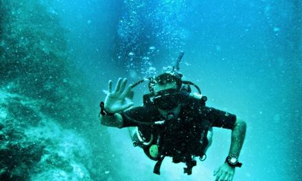 Bautismo de buceo en el mar para 1 o 2 personas desde 39,99 € en Dardanus