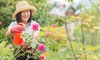 $180 Off Online Gardening Course from SkillSuccess eLearning