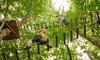 Białołęka: park linowy