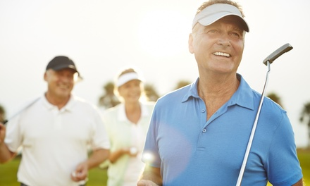 One, Three, or Five 90-Minute Private Golf Lessons with Swing Diagnosis at Billy Casper Golf (Up to 62% Off)