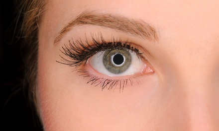 Lash Lift and Tint at New You Beauty And Clinic (60% Off)