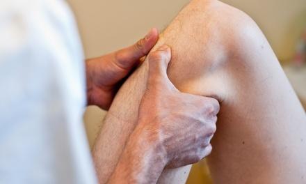 1 o 2 sesiones de fisioterapia de 1 hora desde 22,95 € en Institut de Salut Holística