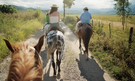 Up to 40% Off on Horse Back Riding - Training at Arkansas Equine Adventures