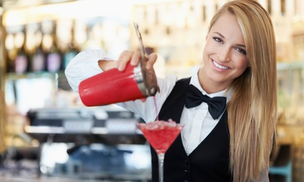 Online Video Bartending Class from Famous Bartending School (Up to 95% Off)