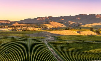 Up to 35% Off Hike and Wine Tour from Wine Excursions