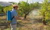 Up to 57% Off Pest-Control from Bugs R Us Pest Control