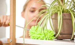 Up to 60% Off House Cleaning from KC Luxury Cleaning