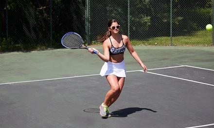 Affitto campo da tennis o padel a 6,90€euro