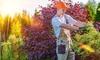 Gartenarbeit inkl. Anfahrt