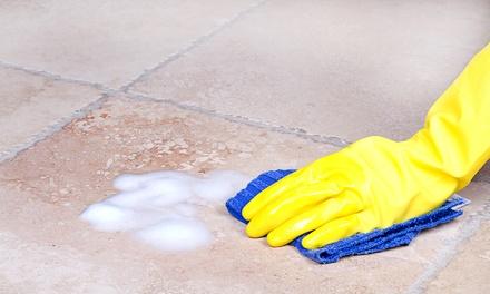 Servicio de limpieza a domicilio de 4 u 8 horas con EcoCleans (hasta 41% de descuento)