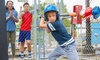 Up to 27% Off Batting Cages at In The Batters Box