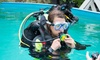 36% Off Discover Scuba at The Illinois Institute of Diving