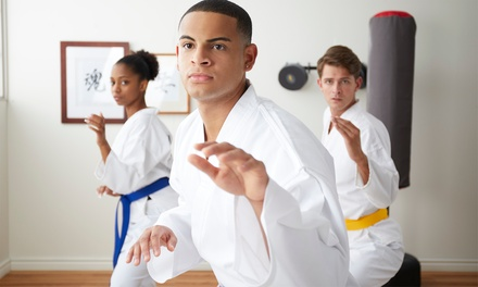 One $10 or Three $25 Months of Karate Classes at Golden Knights Martial Arts, 15 Locations Up to $225 Value