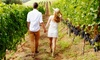 Up to 46% Off Beer and Wine Tours with Niagara Fun Tours