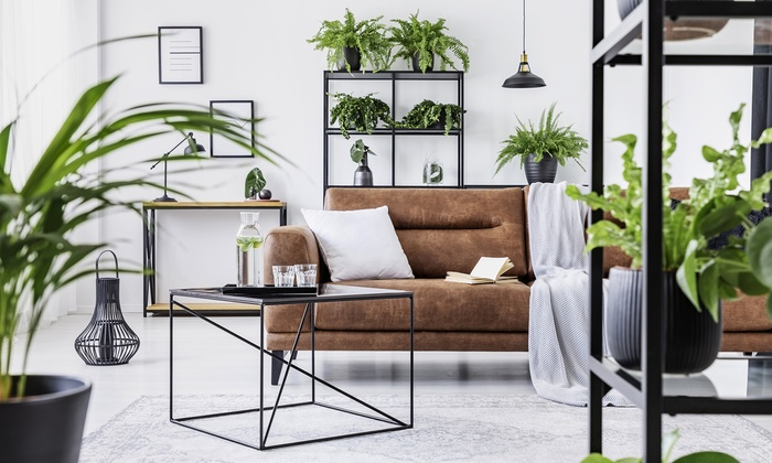 Interior Design Online Course from New Skills Academy
