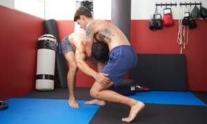 Up to 88% Off Adult MMA Classes at Brooklyn Martial Arts