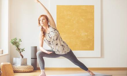 1, 3, 6 o 9 meses de clases de baile o fitness online a elegir con Bailonga.com
