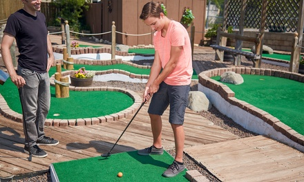 Mini Golf Packages at Blue Fox Rock N' Bowl (Up to 53% Off). Three Options Available.